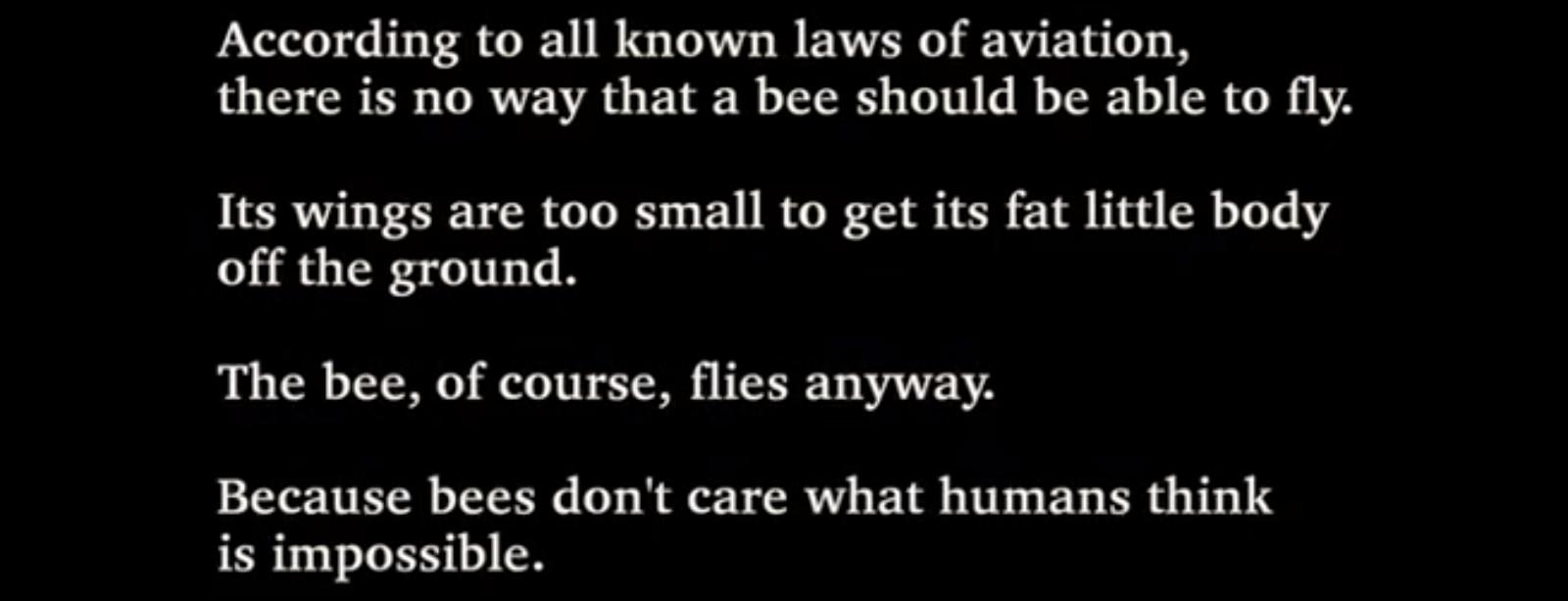 """A dongó viszont ezt nem tudja. Egyszerűen csak repül..."""""""