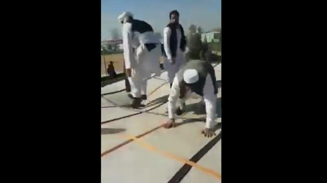 tálibok trambulin