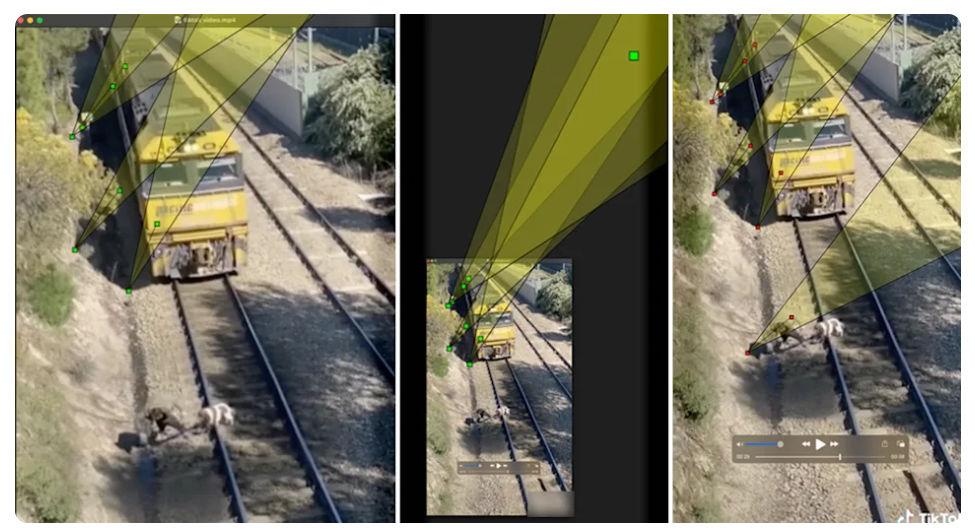 Tiktok videó: árnyékok a vonatos kutyamentésben