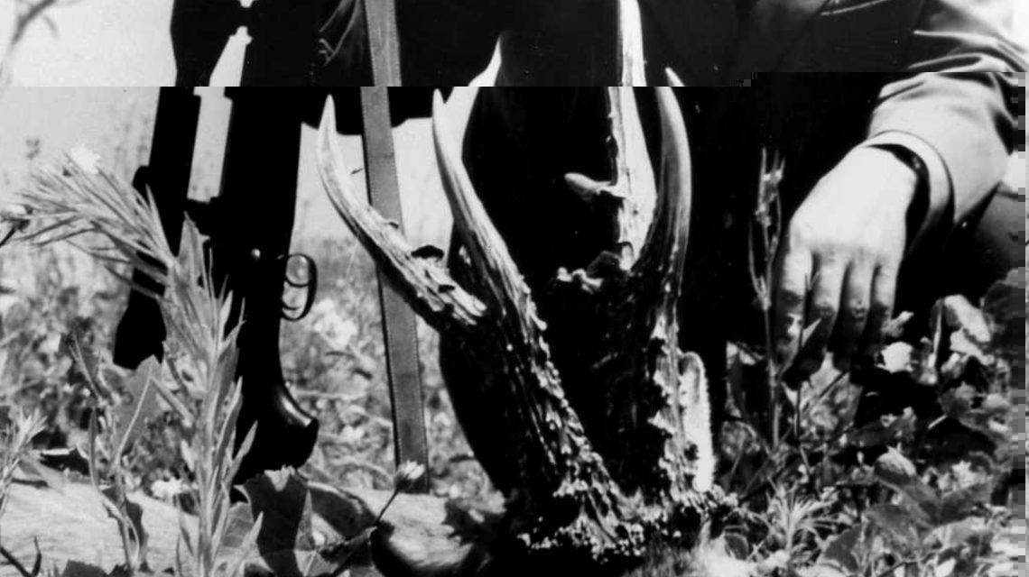 Cseterkei őzbak