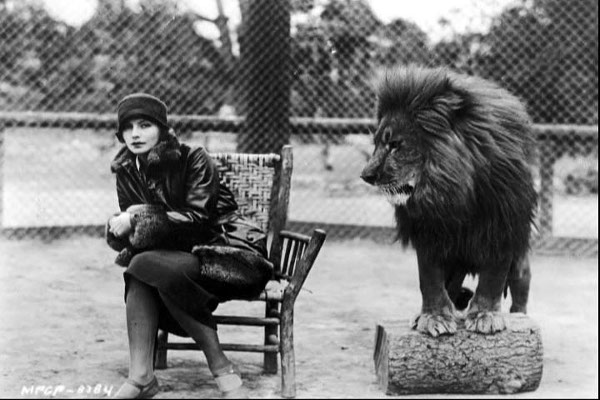 MGM-oroszlán
