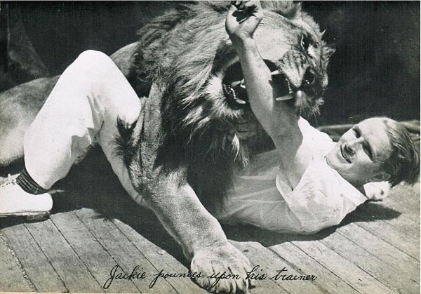 Jackie nevű MGM-oroszlán