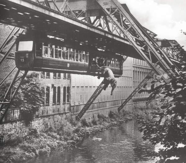 Elefánt a függővasúton Wuppertalban